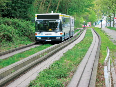 BRTGrass