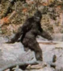 Bigfoot