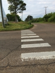 Starkville Crosswalk