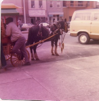 Street Araber, c. 1976, Baltimore Maryland