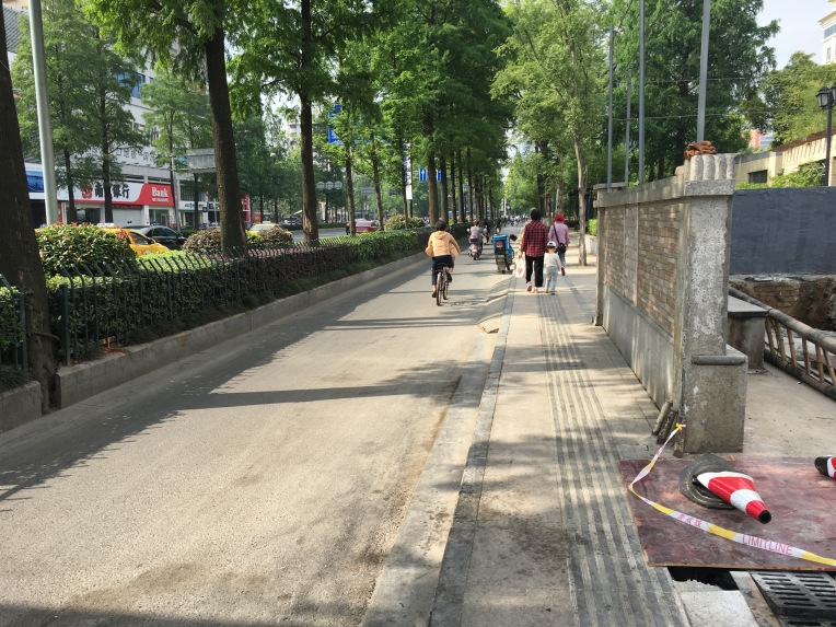 Well executed separated paths with trees for protection. The sidewalk is almost wide enough. The line down the middle of the sidewalk is common in China, to help the blind navigate.