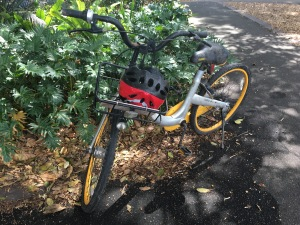 A dirty OBike