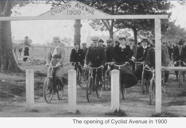 Cyclists Avenue Sydney