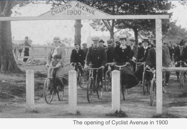 Cyclists Avenue Sydney